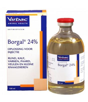 foto_borgal