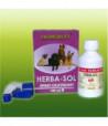 herba-sol-spray-cicatrizant