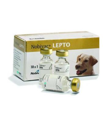 Nobivac-Lepto_tcm91-133702