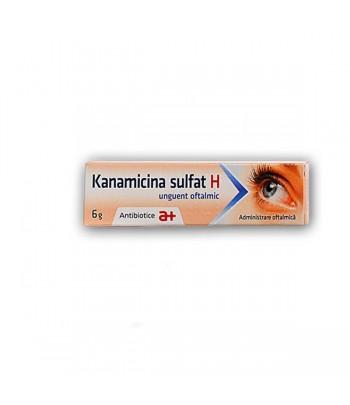 UNGUENT KANAMICINA SULFAT + HIDROCORTIZON