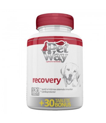 PETWAY RECOVERY X 80 TAB